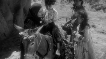 Magdana's Donkey (1)
